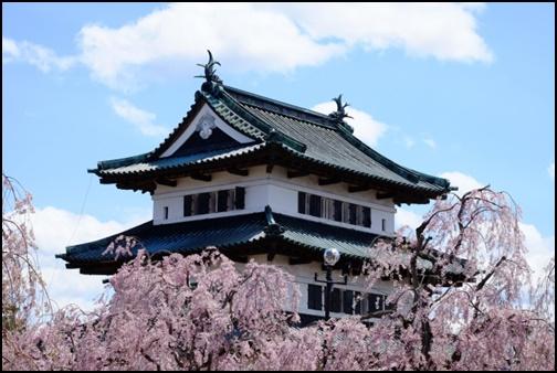 弘前城本丸と桜の画像