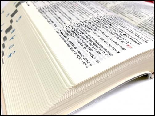 国語辞典の画像