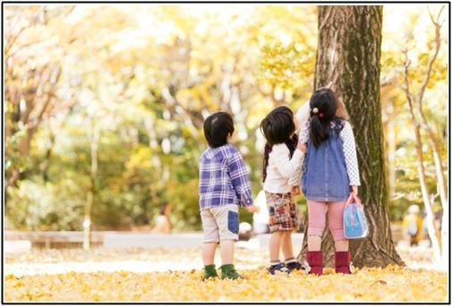 子供達が木を見上げる画像