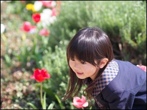 お花を笑顔で見る女の子の画像