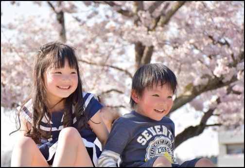 桜と子供達の画像