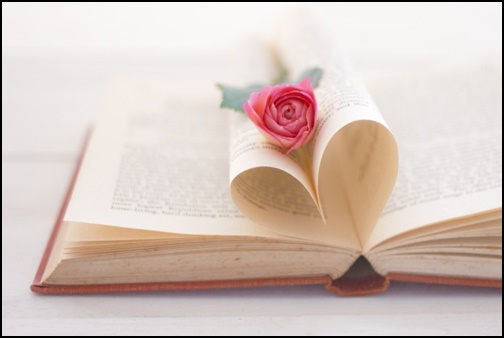 本とバラの画像