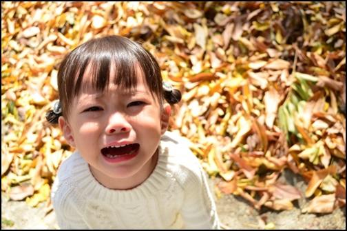 イヤイヤ期で泣く女の子の画像