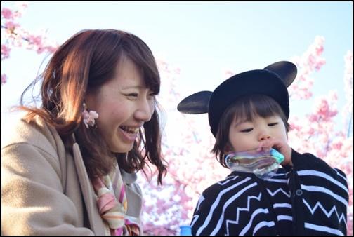 桜と親子の画像