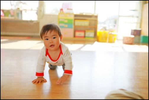 部屋でハイハイしている赤ちゃんの画像