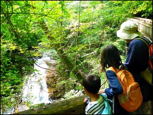 自然を満喫する家族旅行の画像