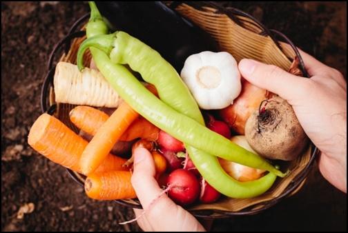 京野菜の画像