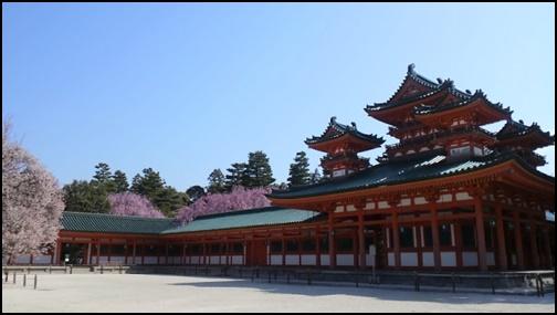 平安神宮の桜の画像