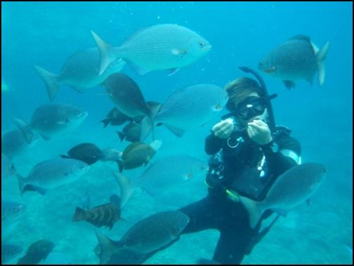 ダイビングをして魚に餌付けをしている画像