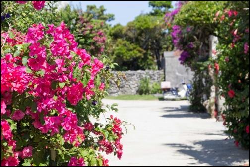 竹富島の画像