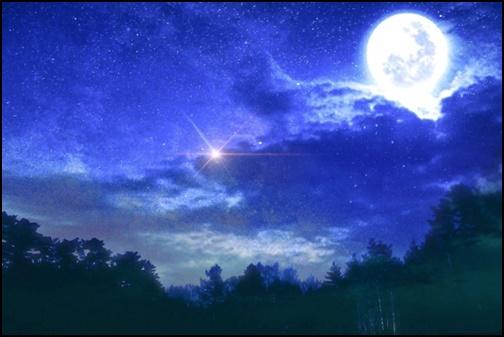 夜中に浮かびあがる満月の画像