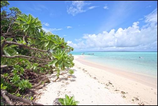 コンドイビーチの画像