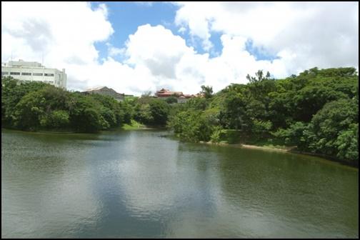 龍潭池の画像