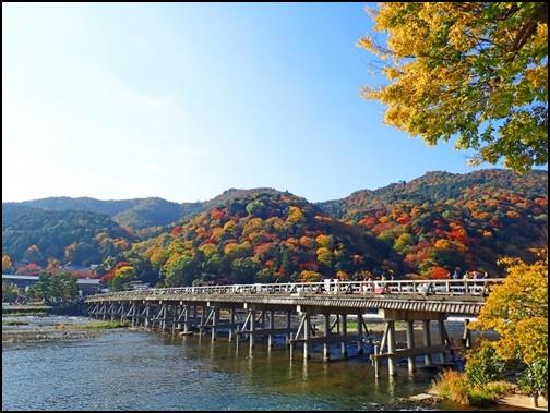 紅葉した渡月橋の画像