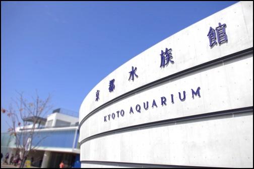 京都水族館の画像