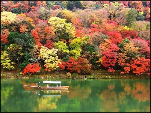 紅葉した嵐山の画像