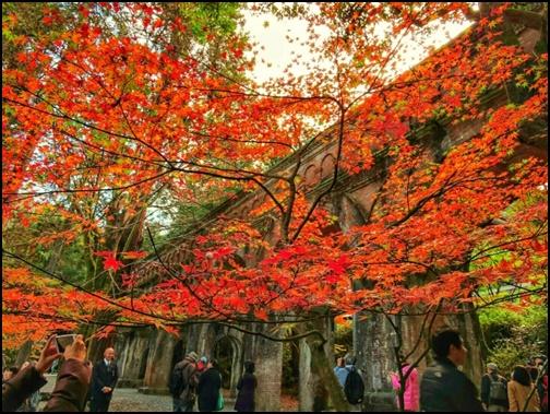 紅葉した南禅寺の画像