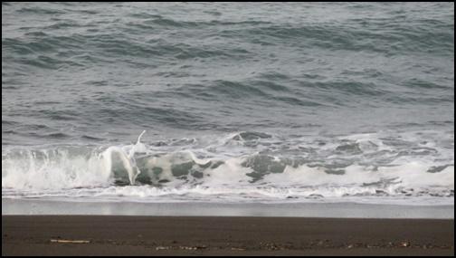 冬の海の画像