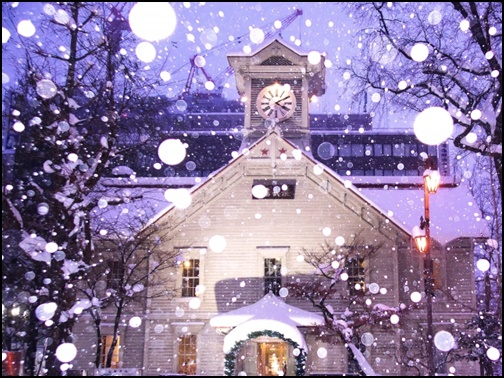 雪化粧の札幌の画像