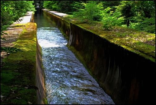 南禅寺の水路の画像