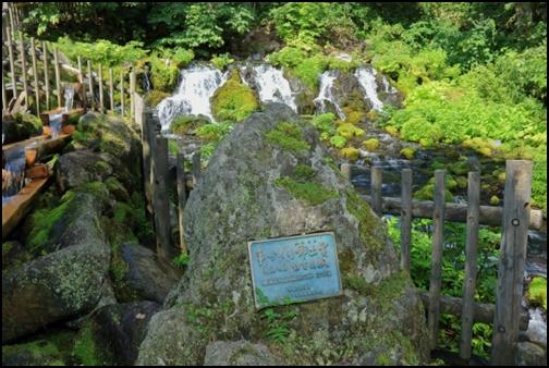 京極名水ふきだし公園の画像