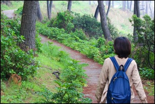 女子一人旅の画像