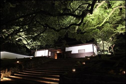青蓮院のライトアップ画像