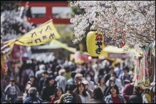 桜観光で大混雑している画像