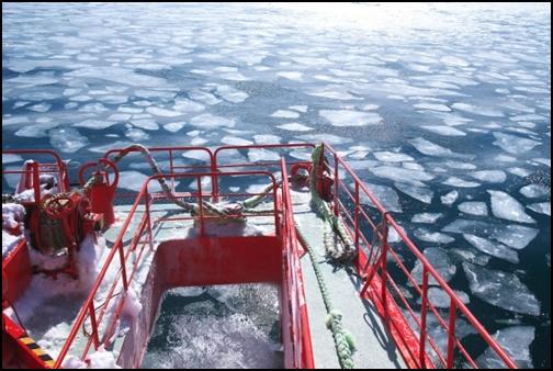流氷ツアーの画像