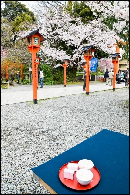 平野神社でお花見の画像