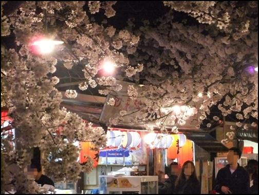 夜桜と屋台の画像