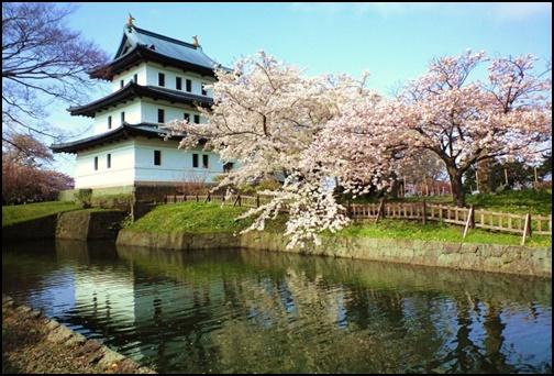 お城と桜の画像