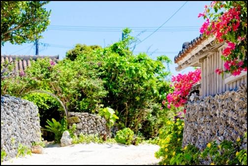 沖縄の住宅地とお花の画像