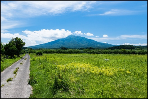 5月の北海道の画像