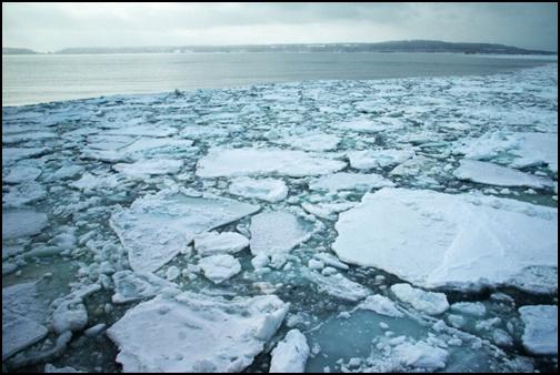 流氷の画像