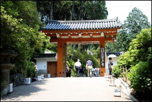 三室戸寺の画像