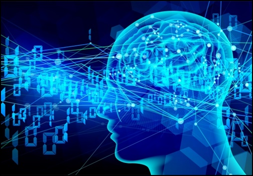 脳のイラスト画像