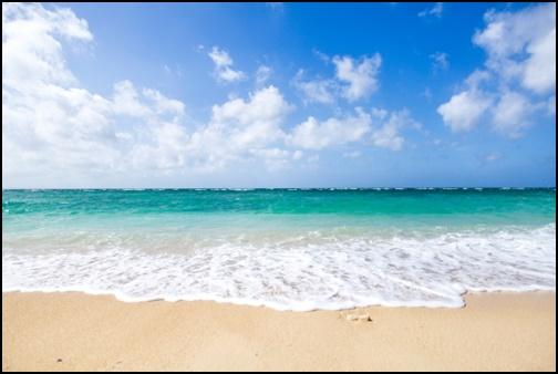 ビーチの画像