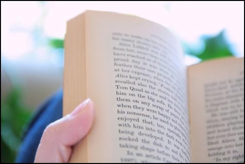 洋書の読書の画像