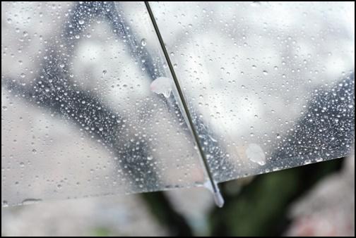 雨傘の画像