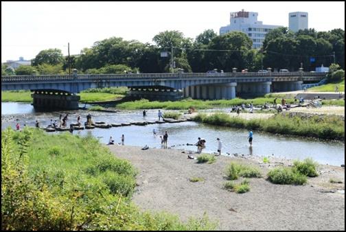 賀茂川の画像