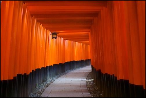 伏見稲荷神社の千本鳥居の画像