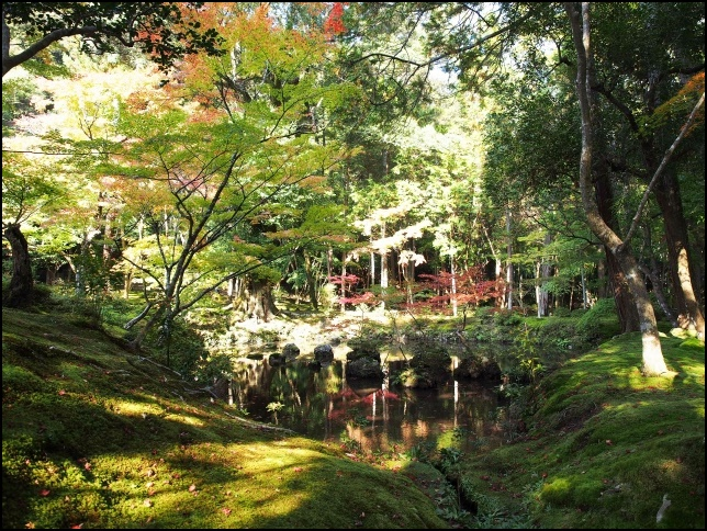 西芳寺の庭園の画像