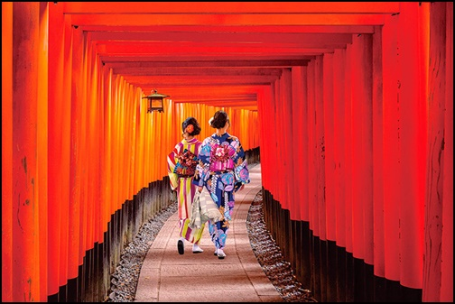 伏見神社の千本鳥居を歩く女性2名の画像