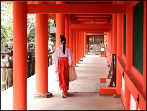 参道の左側を歩く女性の画像
