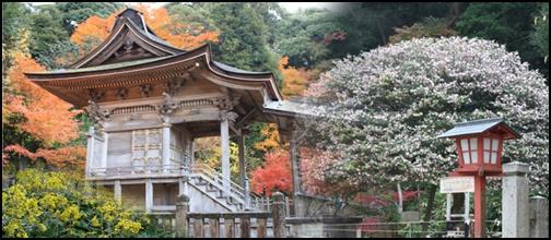 山王宮日吉神社の画像