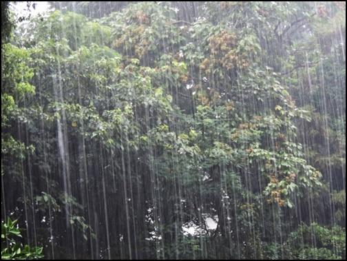 台風で大雨の画像