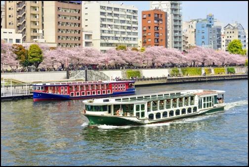 隅田川の画像