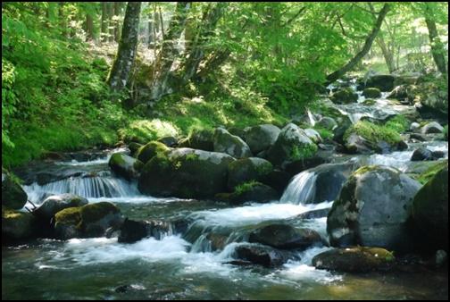 山中の川の画像