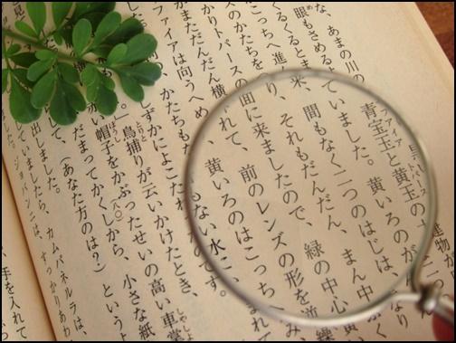 文字と虫眼鏡の画像